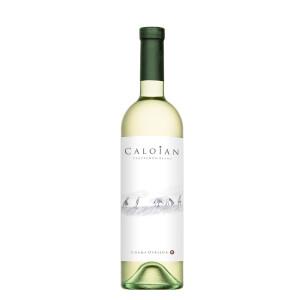 Crama Oprisor - Caloian Sauvignon Blanc 2020 - 0.75L, Alc: 13%
